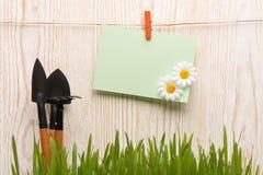 Herramientas que cultivan un huerto e hierba Imágenes de archivo libres de regalías