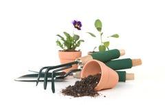 Herramientas que cultivan un huerto en el fondo blanco Fotografía de archivo libre de regalías