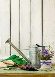 Herramientas que cultivan un huerto en el fondo de madera blanco - primavera Foto de archivo
