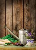 Herramientas que cultivan un huerto en el fondo de madera del vintage - primavera Imágenes de archivo libres de regalías