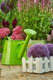 Herramientas que cultivan un huerto en el jardín Foto de archivo libre de regalías