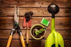 Herramientas que cultivan un huerto en la tabla de madera del vintage - primavera Foto de archivo