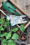 Herramientas que cultivan un huerto en una caja Fotos de archivo libres de regalías
