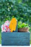 Herramientas que cultivan un huerto en una caja de herramientas de madera Fotografía de archivo libre de regalías