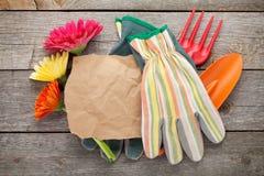 Herramientas que cultivan un huerto, guantes y flores del gerbera Foto de archivo