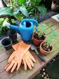 Herramientas que cultivan un huerto nuevas, bandeja del bastón Foto de archivo libre de regalías