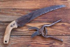 Herramientas que cultivan un huerto nuevas, bandeja del bastón Imágenes de archivo libres de regalías