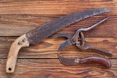Herramientas que cultivan un huerto nuevas, bandeja del bastón Imagen de archivo