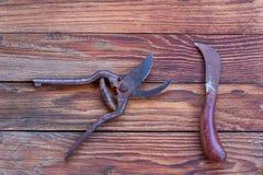 Herramientas que cultivan un huerto nuevas, bandeja del bastón Fotografía de archivo libre de regalías