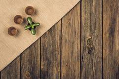 Herramientas que cultivan un huerto y accesorios en fondo de madera Visión superior Foto de archivo