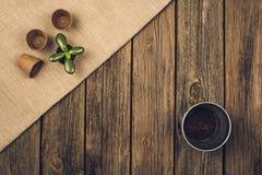 Herramientas que cultivan un huerto y accesorios en fondo de madera Visión superior Foto de archivo libre de regalías