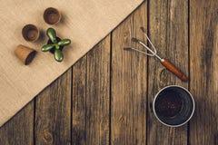 Herramientas que cultivan un huerto y accesorios en fondo de madera Visión superior Imágenes de archivo libres de regalías