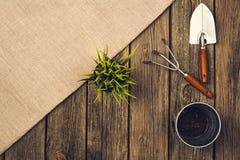 Herramientas que cultivan un huerto y accesorios en fondo de madera Visión superior Fotografía de archivo libre de regalías