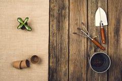 Herramientas que cultivan un huerto y accesorios en fondo de madera Visión superior Imagen de archivo libre de regalías