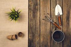 Herramientas que cultivan un huerto y accesorios en fondo de madera Visión superior Fotografía de archivo