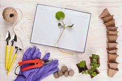 Herramientas que cultivan un huerto y almácigos Imágenes de archivo libres de regalías