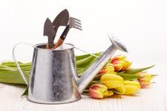 Herramientas que cultivan un huerto y flores Imágenes de archivo libres de regalías
