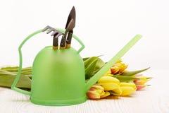 Herramientas que cultivan un huerto y flores Foto de archivo libre de regalías