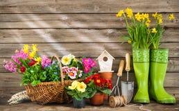 Herramientas que cultivan un huerto y flores de la primavera Imágenes de archivo libres de regalías