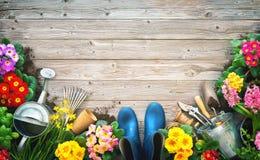 Herramientas que cultivan un huerto y flores de la primavera en la terraza fotografía de archivo