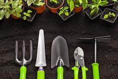 Herramientas que cultivan un huerto y plantas Imagenes de archivo