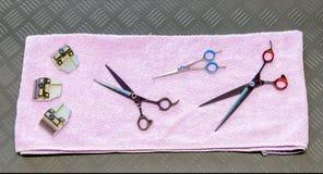 Herramientas y accesorios de la preparación del perro fijados Fotos de archivo