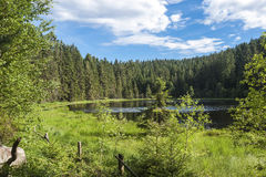 Herrenwiesersee lake in Forbach royalty free stock photo