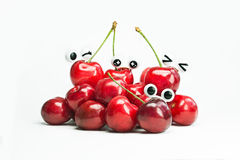 Herries maturi del  di rosso Ñ Fotografie Stock