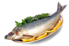 Herring Stock Photo