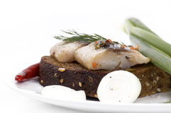 Herring Royalty Free Stock Photo