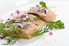 Herring. Macro picture of herring fillet on the plate Stock Photos