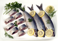 Herring. Sliced herring on the dish royalty free stock photography
