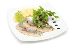 Herring appetizer Stock Photography