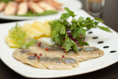 Herring appetizer Royalty Free Stock Photo