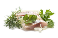 Herring with aromatic herbs Stock Photography