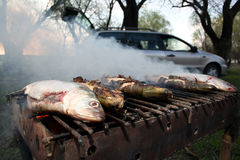 Herring barbeque Royalty Free Stock Image