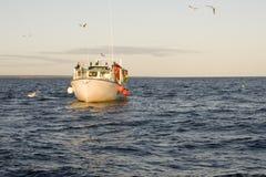 Herring Boat Stock Photos