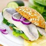 Herring in a bun Stock Photography