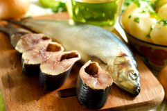 Herring and chunks of herring Royalty Free Stock Photos