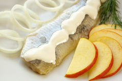Herring with cream Royalty Free Stock Photo