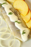 Herring with cream Stock Image