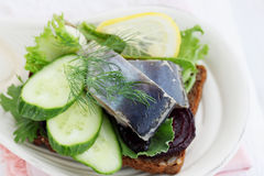 Herring with cucumber and lemon Stock Photography