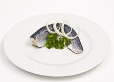 Herring Filet on a white Dish Stock Photography