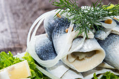 Herring Filets on a plate Stock Images