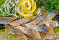 Herring fillet 3 Stock Images