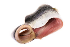 Herring Fillet Royalty Free Stock Photography