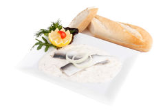 Herring fillet on dill sauce Stock Photos
