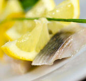 Herring fillet Royalty Free Stock Images