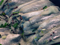Herring Fillet. Oceanic herring fillet on market, food background Royalty Free Stock Photos