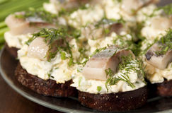 Herring fillet on toasted rye bread Stock Image